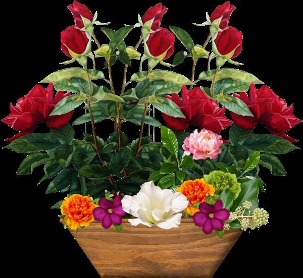tubes fleurs en vase pots page 3. Black Bedroom Furniture Sets. Home Design Ideas